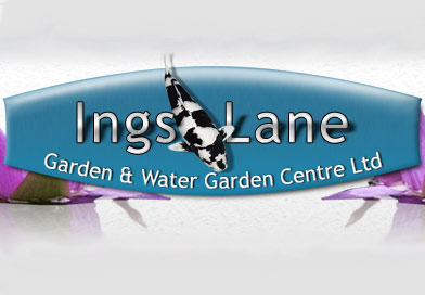 Ings Lane
